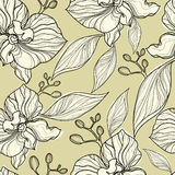 Seamless floral orchid pattern Stock Image