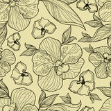 Seamless Floral Orchid Pattern Royalty Free Stock Image