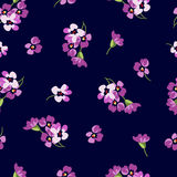 Seamless floral patter with little pink flowers Stock Photos