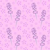 Seamless Floral Pattern 10 Royalty Free Stock Images