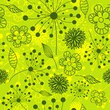 Seamless floral pattern,  Stock Photo