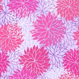 Seamless floral pattern. With flowers of chrysanthemum Stock Image