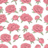Seamless with floral pattern Stock Image