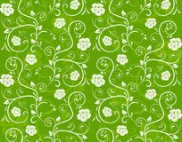 Seamless floral pattern. Seamless vector texture of overlying layers of floral elements and scrolls Royalty Free Stock Photography