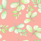 Seamless floral pattern with the abstract watercolor green and pink branches. Hand drawn on a pink background Stock Image