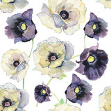 Seamless floral pattern with anemones. Watercolor illustration Stock Image