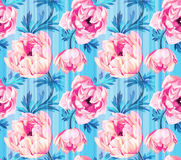 Seamless floral pattern with anemonies and stripes. Stock Image