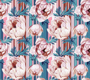 Seamless floral pattern with anemonies and stripes. Royalty Free Stock Image