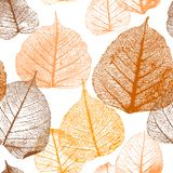 Seamless floral pattern with autumn leaves. Royalty Free Illustration