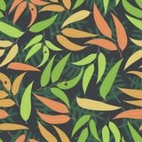 Seamless floral pattern. Background with eucalyptus leaves. Summer vector illustration with gum-tree leaves Royalty Free Stock Photography
