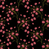 Seamless floral pattern background .flowers on black background. Royalty Free Stock Photography