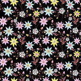 Seamless floral pattern background .flowers on black background. Royalty Free Stock Photos