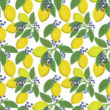 Seamless floral pattern background, lemons, berries on a white background. Seamless floral pattern background, yellow lemons, blue berries on a white background vector illustration