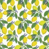 Seamless floral pattern background,  lemons,  berries on a white background. Seamless floral pattern background, yellow lemons, blue berries on a white Royalty Free Stock Photos