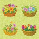 Seamless floral pattern, baskets with flowers Stock Images