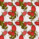 Seamless floral pattern with berry of dog-rose background Stock Image