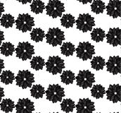 Seamless floral pattern. Black dahlias on white background Royalty Free Stock Photos