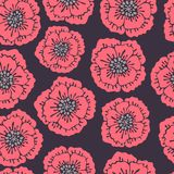 Seamless floral pattern with blooming poppies. Stock Images