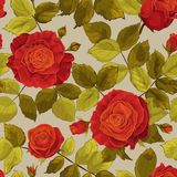 Seamless floral pattern with blooming roses and leaves_red roses royalty free illustration