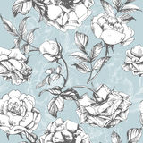 Seamless floral pattern with a blossoming branch of rose. Royalty Free Stock Image