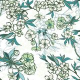 Seamless floral pattern with blossoming cherry or Stock Images