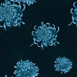Seamless  floral pattern with blue chrysanthemums Stock Image