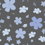 Seamless  floral pattern with blue flowers on dark background. Stock Images