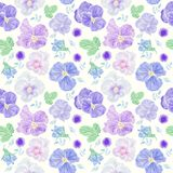 Seamless floral pattern with blue viola flowers vector illustration