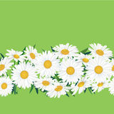 Seamless floral pattern border with flower Royalty Free Stock Images