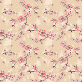 Seamless floral pattern with cherry blossom texture on beige Royalty Free Stock Photos
