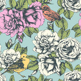 Seamless floral pattern with colorful flowers and  birds. Royalty Free Stock Photography