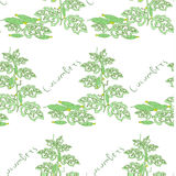 Seamless floral pattern with cucumber bushes Royalty Free Stock Photo