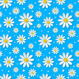 Seamless floral pattern with 3d chamomiles. On blue background. Vector illustration Royalty Free Illustration