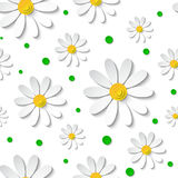 Seamless floral pattern with 3d chamomiles with green dots. Seamless floral pattern with 3d chamomiles isolated on white with green dots. Vector illustration Royalty Free Illustration