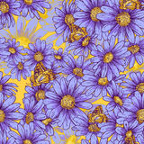 Seamless floral pattern with daisies Stock Photography