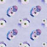 Seamless floral pattern with daisy flowers Stock Photos