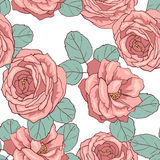 Seamless floral pattern. Floral seamless pattern for design Royalty Free Stock Image