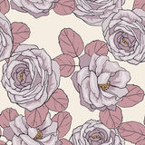 Seamless floral pattern. Floral seamless pattern for design Royalty Free Stock Photography