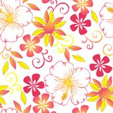 Seamless Floral pattern design. Textile print design Royalty Free Stock Image