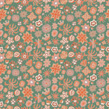Seamless floral pattern different painted flowers Royalty Free Stock Photos