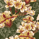 Seamless floral pattern with exotic flowers Stock Photo
