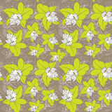 Seamless floral pattern fantasy blooming green white orchids on Stock Photography