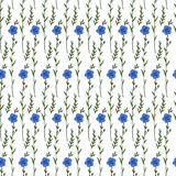 Seamless floral pattern, Flax plant, wild field flower isolated on white background, hand drawn sketch vector ink. Illustration, texture for design package Stock Photography