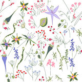 Seamless floral pattern with flowers Royalty Free Stock Photos