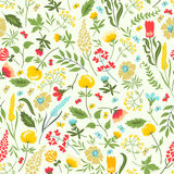 Seamless floral pattern with flowers and herbs Royalty Free Stock Images