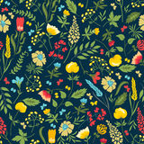 Seamless floral pattern with flowers and herbs. Cute vector seamless floral pattern with flowers and herbs. Seamless pattern can be used for wallpapers, fabric Royalty Free Stock Photo