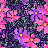 Seamless floral pattern with flowers and herbs. Vector seamless floral pattern with flowers and herbs Stock Image
