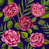 Flowers pattern - pink peonies, roses oil painting. Seamless floral pattern. Flowers  peonies roses texture Royalty Free Stock Images