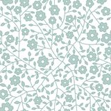 Seamless floral pattern. Flowers texture. Daisy. Royalty Free Stock Images