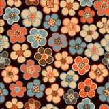 Seamless floral pattern. Flowers texture. Daisy. Royalty Free Stock Photography